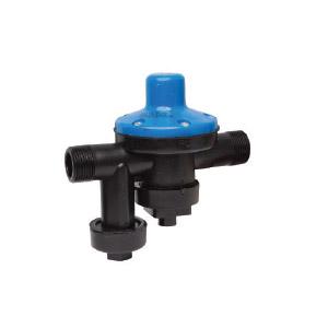 Neptune 100 kPa - Blue - Pressure Control Valve - BSP